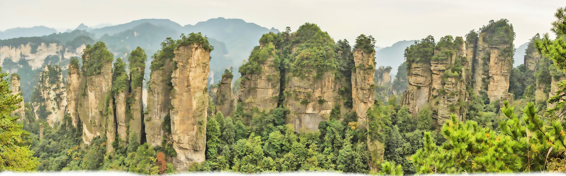 Wulingyuan Scenic Area Tours From Home Logo
